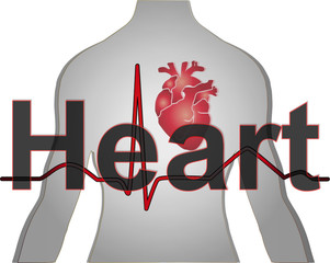 Heart Wallpaper Vector Medical Background