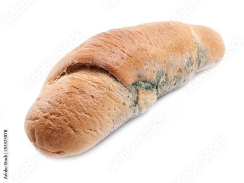 Moldy loaf