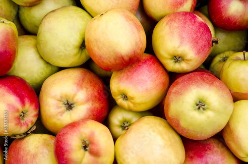 Bunch of appetizing red apples