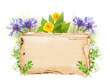 Old paper with wild flowers isolated on white