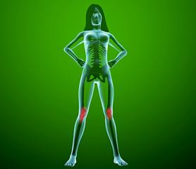 Corpo umano donna ginocchia gambe ai raggi x
