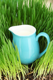 Pitcher of milk standing on grass close up