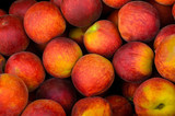 Fresh colorful peaches
