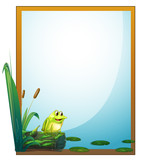 A frame with a frog in the pond
