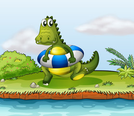 A crocodile at the riverside with a buoy