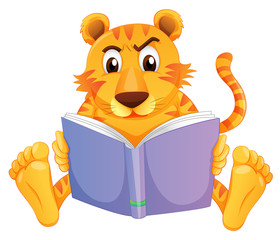 A tiger reading