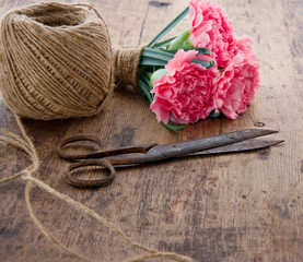 Carnations with old antique scissors