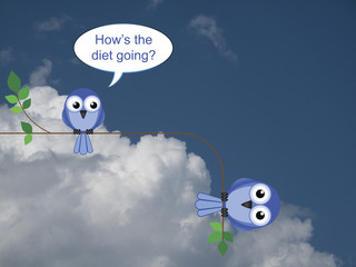 Fat bird on an unsuccessful diet