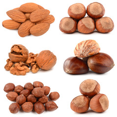 Collection of nuts on a white background