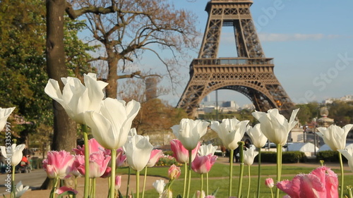 Springtime in Paris. Two shots.