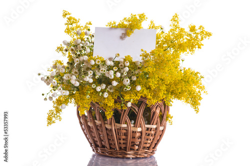 Summer bouquet of wild flowers