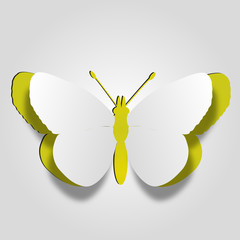 Conceptual yellow paper butterfly on white background