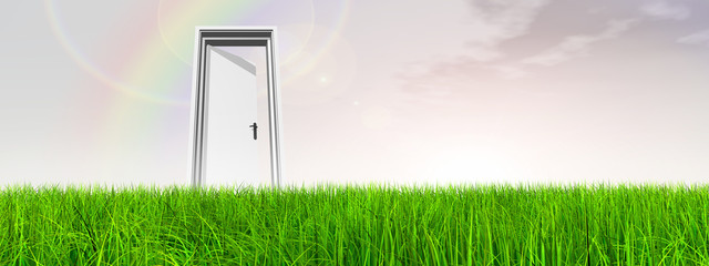 Conceptual door on grass over sky