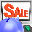Sale On Monitor Shows Promotional Prices