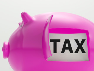Tax In Piggy Shows Taxation Savings Taxpayer