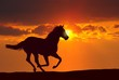 canvas print picture - Horse running under sunset