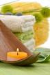Wellness Grün Kerze Wollgraszweig Schwamm