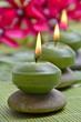Wellness Grün Ochidee Kerzen
