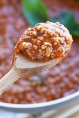 Ragu On Spoon Detail