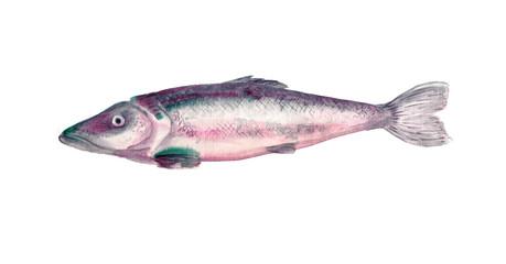 Fish watercolor