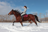 Woman riding horse in winter