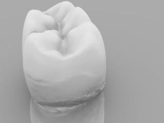 Molare 3D