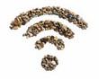 Gravel WiFi