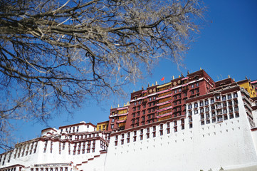 The Potala Palace in Lhasa. Tibet