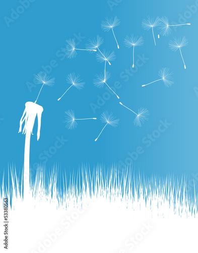 Dandelion blow vector background concept