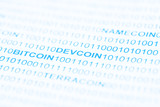 Bitcoin Devcoin Payment Systems