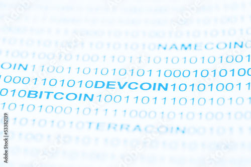 Devcoin Payment System