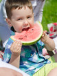 Portrait of a boy eating watermelon in the park