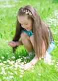 Little girl gathering flowers in summer park poster