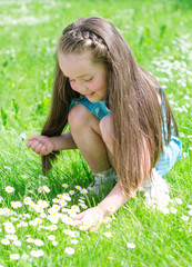 Little girl gathering flowers in summer park