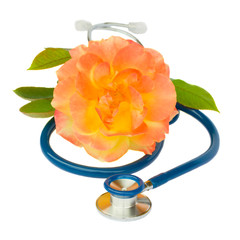 Blue stethoscope with rose