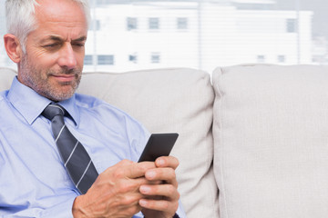 Cheerful businessman using smartphone