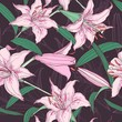 Pink lilies floral seamless pattern