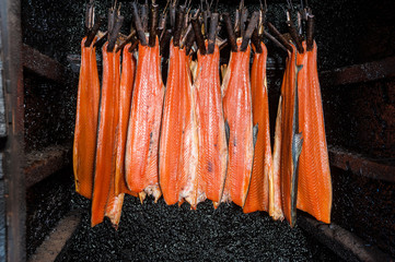 Smoking salmon in traditional British smokehouse