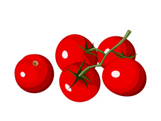 Cherry tomatoes. Vector illustration.