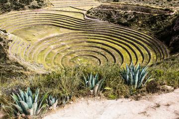 Peru,Moray,Inca circular terraces.Incas laboratory agriculture