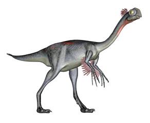Gigantoraptor dinosaur