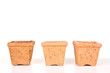 Terracotta or clay gardening pots