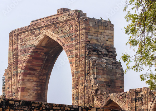 Parrots on ancient Arabic gateway at Qut'b Minar in Delhi.