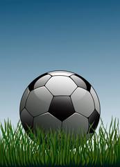 Futbol topu  ( versiyon 3 )