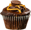 Peanut Butter Cupcake with Swirls of Chocolate