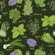 Herbs on the dark background pattern