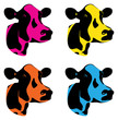 a set of three coloured cow heads