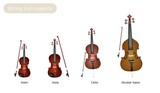 Four Musical Instrument Strings on White Background