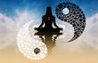 Tao symbol