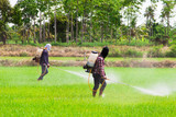 Two people spraying pesticides poster